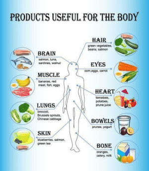 RT @learnthngs: DID YOU KNOW❓❓❓ (PRODUCTS USEFUL FOR THE BODY) https://t.co/xyXgZb7EIY: RT @learnthngs: DID YOU KNOW❓❓❓ (PRODUCTS USEFUL FOR THE BODY) https://t.co/xyXgZb7EIY