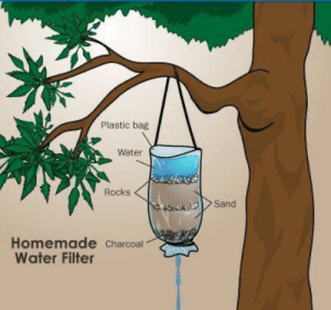 RT @learnthngs: How to Find Water in the Wild https://t.co/u3NfLgPaNB: RT @learnthngs: How to Find Water in the Wild https://t.co/u3NfLgPaNB