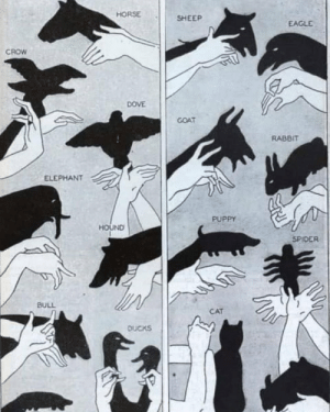 RT @learnthngs: How to make shadow puppets in a 1930 article from Modern Mechanix. https://t.co/RCdye6QSYO: RT @learnthngs: How to make shadow puppets in a 1930 article from Modern Mechanix. https://t.co/RCdye6QSYO
