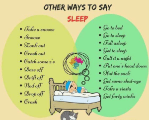 RT @learnthngs: Other Ways To Say Sleep 👇👇 https://t.co/2E3eeJo4wL: RT @learnthngs: Other Ways To Say Sleep 👇👇 https://t.co/2E3eeJo4wL