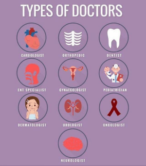 RT @learnthngs: TYPES OF DOCTORS 🏥 https://t.co/ehaHMhGRct: RT @learnthngs: TYPES OF DOCTORS 🏥 https://t.co/ehaHMhGRct