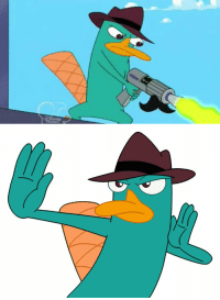 RT @spdeynick: just saying, if perry the platypus was in the avengers thanos would be dead in no time https://t.co/mYsYGv4fbY: RT @spdeynick: just saying, if perry the platypus was in the avengers thanos would be dead in no time https://t.co/mYsYGv4fbY