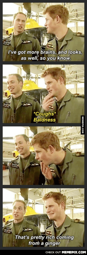 Royal painomg-humor.tumblr.com: rths  I've got more brains, and looks,  as well, so you know.  *Coughs*  Baldness  That's pretty rich coming  from a ginger  CНECK OUT MEМЕРIХ.COM  | МЕМЕРIХ.Сом Royal painomg-humor.tumblr.com