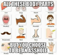 liver: RTS  Liver  lungs  Mouth  Mouth(l)  Mouth(2)  Muscle  Muscle(1)  Mustache  Mustachel)  Neck  Nose  Nosel)  TOBEANASSHOLE  Nose(2)  aim  Palm(1)  ay
