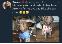 """America, Blessed, and Clothes: Rubess @rubyymaee 4 d  My mum gets handmade clothes from  America for my dog and I literally can't  cope <p>Blessed and well dressed via /r/wholesomememes <a href=""""https://ift.tt/2uxkHM8"""">https://ift.tt/2uxkHM8</a></p>"""