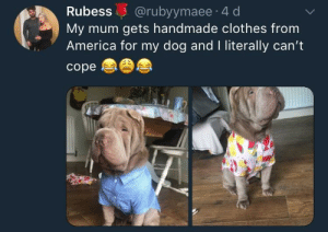 America, Blessed, and Clothes: Rubess @rubyymaee 4 d  My mum gets handmade clothes from  America for my dog and I literally can't  cope Blessed and well dressed