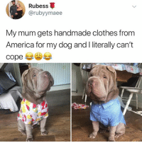 America, Clothes, and Memes: Rubess  @rubyymaee  My mum gets handmade clothes from  America for my dog and I literally can't  cope Why does this dog look like my Persian grandpa
