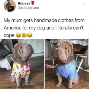 Clothes For Dogs: Rubess  @rubyymaee  My mum gets handmade clothes from  America for my dog and I literally can't Clothes For Dogs