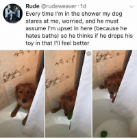 Memes, Rude, and Shower: Rude @rudeweaver. 1d  Every time I'm in the shower my dog  stares at me, worried, and he must  assume l'm upset in here (because he  hates baths) so he thinks if he drops his  toy in that I'll feel better say no to baths staystrongfren