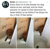 Baths: Rude @rudeweaver-1d  Every time I'm in the shower my dog  stares at me, worried, and he must  assume l'm upset in here (because he  hates baths) so he thinks if he drops his  toy in that I'll feel better  S,