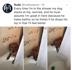 Rude, Shower, and Time: Rude @rudeweaver 1d  Every time l'm in the shower my dog  stares at me, worried, and he must  assume I'm upset in here (because he  hates baths) so he thinks if he drops his  toy in that l'll feel better