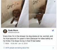 Dogs, God, and Rude: Rude Worm  @badmoodrude  Every time I'm in the shower my dog stares at me, worried, and  he must assume I'm upset in here (because he hates baths) so  he thinks if he drops his toy in that I'll feel better  665K 10:25 AM - Jan 13, 2018  207K people are talking about this