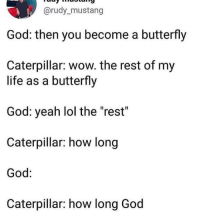 "God, Life, and Lol: @rudy_mustang  God: then you become a butterfly  Caterpillar: wow. the rest of my  life as a butterfly  God: yeah lol the ""rest""  Caterpillar: how long  God:  Caterpillar: how long God <p>Mysterious ways via /r/memes <a href=""https://ift.tt/2FdfLMG"">https://ift.tt/2FdfLMG</a></p>"