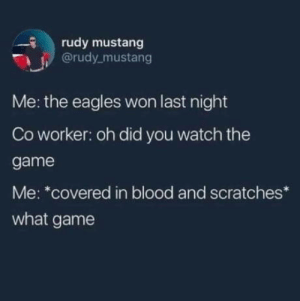 Eagles won: rudy mustang  @rudy mustang  Me: the eagles won last night  Co worker: oh did you watch the  game  Me: *covered in blood and scratches  what game Eagles won