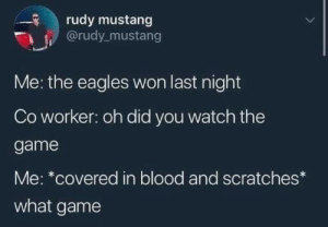 Mustang: rudy mustang  @rudy_mustang  Me: the eagles won last night  Co worker: oh did you watch the  game  Me: *covered in blood and scratches*  what game