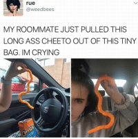 Ass, Crying, and Memes: rue  @weedbees  MY ROOMMATE JUST PULLED THIS  LONG ASS CHEETO OUT OF THIS TINY  BAG. IM CRYING 😂WTH