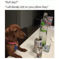 "Funny, Stfu, and Ciroc: Ruff day?  ""I will literally shit on your pillow Gary""  Roc Damn Gary STFU (@ciroc)"