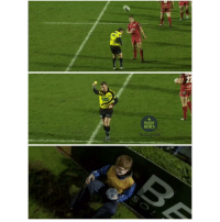 Rugby, Him, and Last Night: RUGBY  MEMES Nigel Owens yellow-carded a ball boy last night for accidentally hitting him with the ball. QUALITY 😂👍🏼 rugby nigelowens banter