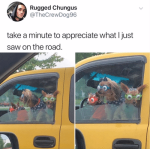 Saw, Appreciate, and On the Road: Rugged Chungus  @TheCrewDog96  take a minute to appreciate what I just  saw on the road. Where do you get these goggles???