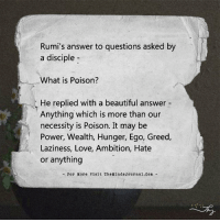 Memes, Ambition, and Greed: Rumi's answer to questions asked by  a disciple  What is Poison?  He replied with a beautiful answer  Anything which is more than our  necessity is Poison. It may be  Power, Wealth, Hunger, Ego, Greed,  Laziness, Love, Ambition, Hate  or anything  For More visit The MindsJournal.com What is poison?