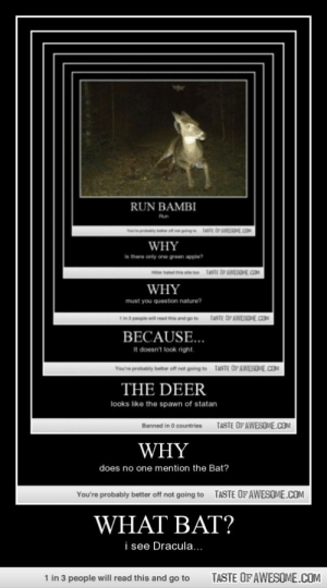 What Bat?http://omg-humor.tumblr.com: RUN BAMBI  Run  TasE OAWEOE.OM  WHY  there only one green apple?  TASTE OPAWESOME.COM  WHY  must you question nature?  TASTE OF AWESOVE.COM  go to  BECAUSE...  It doesn't look right.  You're probably better offnet going to  TASTE OFAWESOVE.COM  THE DEER  looks like the spawn of statan  TASTE OF AWESOME.COM  Banned in O countries  WHY  does no one mention the Bat?  TASTE OFAWESOME.COM  You're probably better off not going to  WHAT BAT?  i see Dracula..  1 in 3 people will read this and go to  TASTE OF AWESOME.COM What Bat?http://omg-humor.tumblr.com