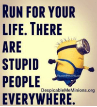 LOL! ..HB: RUN FOR YOUR  LIFE. THERE  ARE  STUPID  PEOPLE  DespicableMeMinions.org  EVERYWHERE. LOL! ..HB