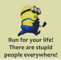Run: Run for your life!  There are stupid  people everywhere!
