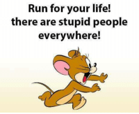 everywhere: Run for your life!  there are stupid people  everywhere!