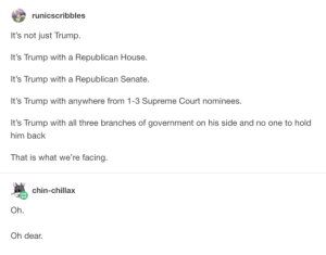 America, Supreme, and Supreme Court: runicscribbles  It's not just Trump.  It's Trump with a Republican House.  It's Trump with a Republican Senate.  It's Trump with anywhere from 1-3 Supreme Court nominees.  It's Trump with all three branches of government on his side and no one to hold  him back  That is what we're facing.  chin-chillax  Oh  Oh dear. I want to get off Americas wild ride