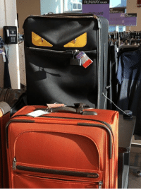 How To, Luggage, and Train: RUNWAY FORM How to train your luggage. https://t.co/bIsNGLJ0uj