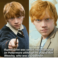 Which Hogwarts house are you in? 😊😻💕 ♔ Tag a friend who loves Harry Potter too! 🤗❤ ◇ Potterheads⚡count: 154,595: Rupert Grint was sorted into Hufflepuff  on Pottermore although he played Ron  Weasley, who was a Gryffindor Which Hogwarts house are you in? 😊😻💕 ♔ Tag a friend who loves Harry Potter too! 🤗❤ ◇ Potterheads⚡count: 154,595