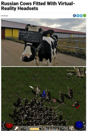 So this is how it worked: Russian Cows Fitted With Virtual-  Reality Headsets  f  one day ago  GARE SADFI  THE SECET COR LEVEL  Di LTY NidmAR  EXPANSION So this is how it worked