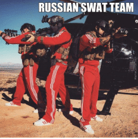 swatted: RUSSIAN SWAT TEAM