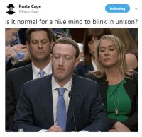 """<p>Their blink patterns synced up via /r/memes <a href=""""https://ift.tt/2ECTOGE"""">https://ift.tt/2ECTOGE</a></p>: Rusty Cage  @Rusty_Cage  Following  Is it normal for a hive mind to blink in unison? <p>Their blink patterns synced up via /r/memes <a href=""""https://ift.tt/2ECTOGE"""">https://ift.tt/2ECTOGE</a></p>"""