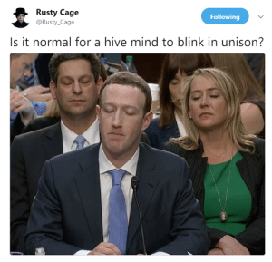 Their blink patterns synced up by EarlyHemisphere FOLLOW 4 MORE MEMES.: Rusty Cage  @Rusty_Cage  Following  Is it normal for a hive mind to blink in unison? Their blink patterns synced up by EarlyHemisphere FOLLOW 4 MORE MEMES.
