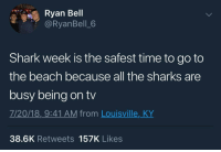"Tumblr, Shark, and Beach: Ryan Bell  @RyanBell_6  Shark week is the safest time to go to  the beach because all the sharks are  busy being on tv  7/20/18,_9:41 AM from Louisville,_KY  38.6K Retweets 157K Likes <p><a href=""https://whitepeopletwitter.tumblr.com/post/176138032626/what-discovery-doesnt-want-you-to-know"" class=""tumblr_blog"">whitepeopletwitter</a>:</p>  <blockquote><p>What Discovery doesn't want you to know</p></blockquote>"