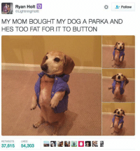 Ryan Holt  XX  Follow  @LightningHoltt  MY MOM BOUGHT MY DOG A PARKA AND  HES TOO FAT FOR IT TO BUTTON  REE TWEETS  LIKES  37,615  54,303