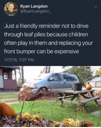Children, Drive, and Leaf: Ryan Langdon  @RyanLangdon_  Just a friendly reminder not to drive  through leaf piles because children  often play in them and replacing your  front bumper can be expensive  11/7/18, 7:07 PM I really dislike children