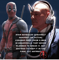 Memes, X-Men, and Deadpool: RYAN REYNOLDS GENUINELY  SNAPPED THE ACTUAL  CEREBRO PROP FROM X-MEN  IN DEADPOOL 2, THEY NEVER  PLANNED TO BREAK IT, BUT  DECIDED TO KEEP IT IN THE  FINAL CUT ANYWAY!  DEADROOL  FACT 😆 • • • • Follow @deadpoolfacts for your daily Deadpool dose. deadpool2 ryanreynolds mcu infinitywar deadpool men