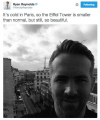 Ryan Reynolds always cracks me up! 😆😆😂 https://t.co/YgT0DcBZNP: Ryan Reynolds  VancityReynolds  Following  It's cold in Paris, so the Eiffel Tower is smaller  than normal, but still, so beautiful. Ryan Reynolds always cracks me up! 😆😆😂 https://t.co/YgT0DcBZNP