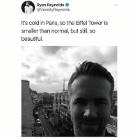 If you're not following @pubity you might as well delete Instagram 😂: Ryan Reynolds  @VancityReynolds  It's cold in Paris, so the Eiffel Tower is  smaller than normal, but still, so  beautiful. If you're not following @pubity you might as well delete Instagram 😂