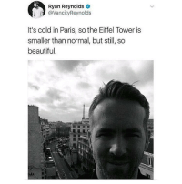 Beautiful, Ryan Reynolds, and Eiffel Tower: Ryan Reynolds  @VancityReynolds  It's cold in Paris, so the Eiffel Tower is  smaller than normal, but still, so  beautiful It shrinks