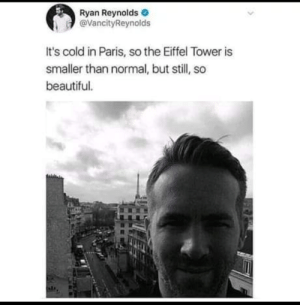 Beautiful, Ryan Reynolds, and Eiffel Tower: Ryan Reynolds  @VancityReynolds  It's cold in Paris, so the Eiffel Tower is  smaller than normal, but still, so  beautiful. oof