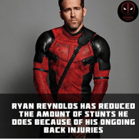 Memes, Movies, and Deadpool: RYAN REYNOLOS HAS REDUCED  THE AMOUNT OF STUNTS HE  DOES BECAUSE OF HIS ONGOING  BACK INJURIES He'll still be doing his own one liners though. • • • • Follow @deadpoolfacts for your daily Deadpool dose. 👇👇👇👇 @vancityreynolds 🙌 wadewilson marvelnation driveby q dc fox movies deadpool marvel deadpool2 hahaha lmfao heh