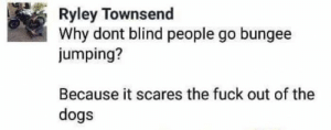 Dogs, Fuck, and Why: Ryley Townsend  Why dont blind people go bungee  jumping?  Because it scares the fuck out of the  dogs Think of the dogs!