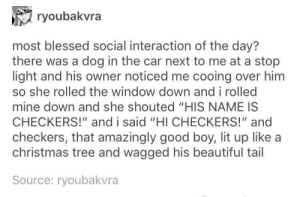 "Beautiful, Blessed, and Christmas: ryoubakvra  most blessed social interaction of the day?  there was a dog in the car next to me at a stop  light and his owner noticed me cooing over him  so she rolled the window down and i rolled  mine down and she shouted ""HIS NAME IS  CHECKERS!"" and i said ""HI CHECKERS!"" and  checkers, that amazingly good boy, lit up like a  christmas tree and wagged his beautiful tail  Source: ryoubakvra A wholesome interaction"