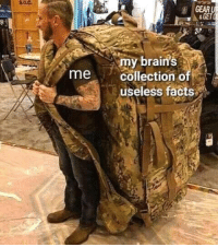 Brains, Facts, and Memes: s.0.c  GEAR  GET  my brain's  collection o  useless facts  meCO