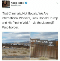 """PINCHE MURO neta HERETOSTAY: S Alexis Isabel  (a lexi4prez  'Not Criminals, Not lllegals, We Are  International Workers, Fuck Donald Trump  and His Pinche Wall."""" via the Juarez/El  Paso border. PINCHE MURO neta HERETOSTAY"""