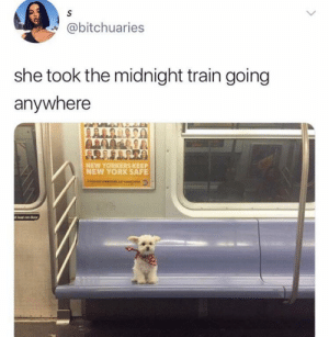 Lean, New York, and Train: S  @bitchuaries  she took the midnight train going  anywhere  NEW YORKERS KEEP  NEW YORK SAFE  ro SEE SOMETNsr sT  t lean on door She just wanted to leave it all behind