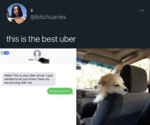 Hello, Uber, and Best: S  @bitchuaries  this is the best uber  139  (682) 727  Hello! This is your Uber driver. I just  wanted to let you know I have my  service dog with me.  Sounds good : That would be the only Uber driver I'd use